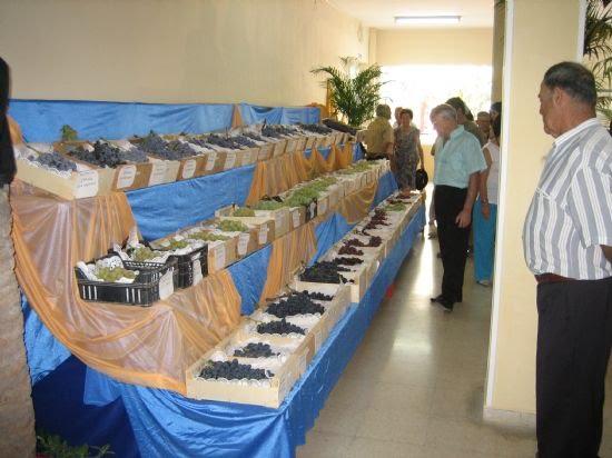 Los agricultores alhameños siguen mostrando los excelentes productos criados en la localidad , Foto 1